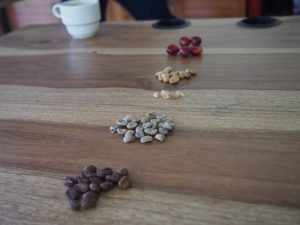 Coffee beans in different states