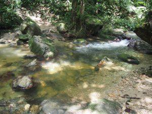 Same river, day 4....